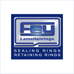 Fey Sealing Rings Retaining Rings